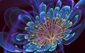 3D Blooming Flower Wallpaper
