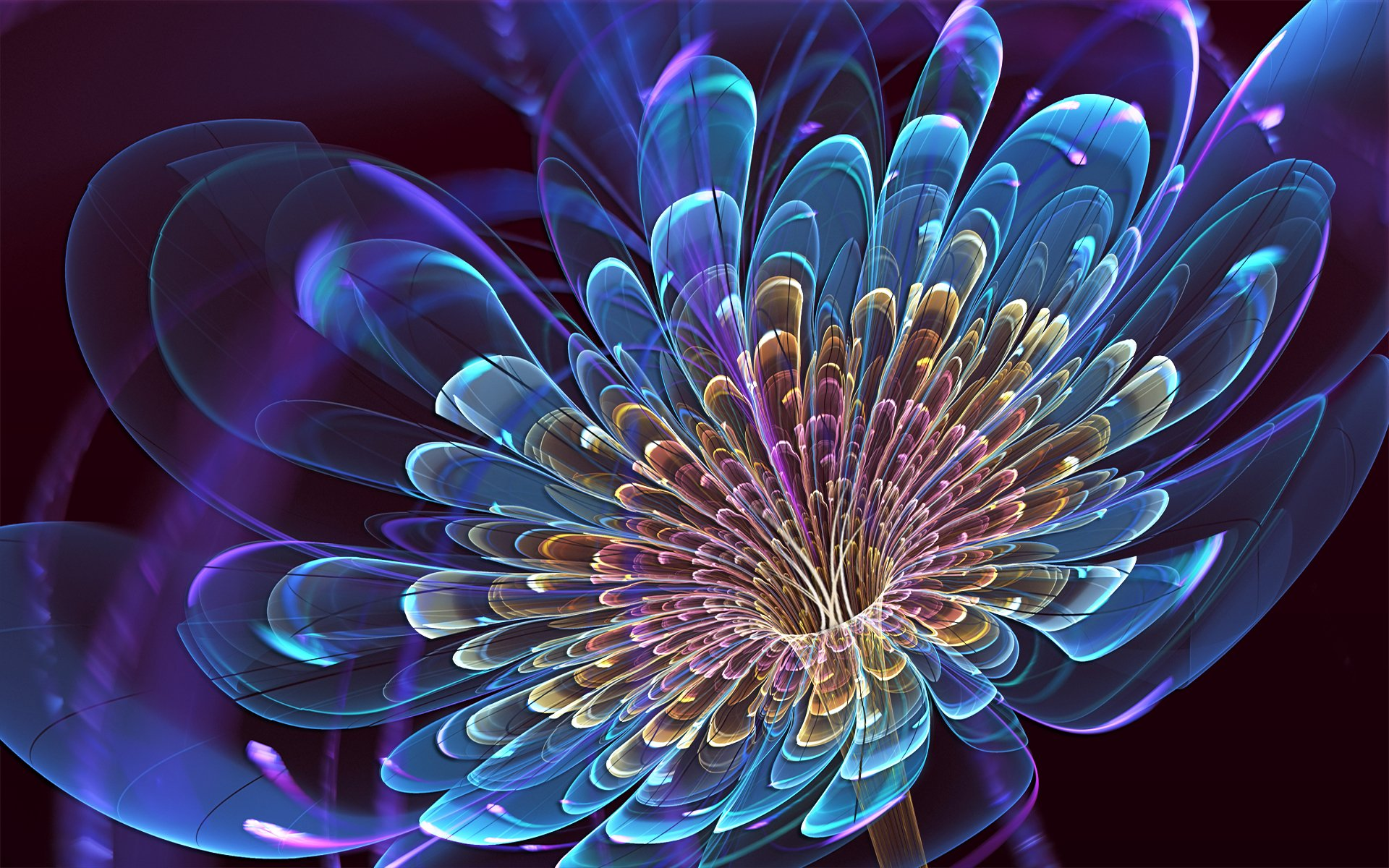 3d blooming flower wallpaper