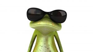3D Funny Frog Wallpaper Background
