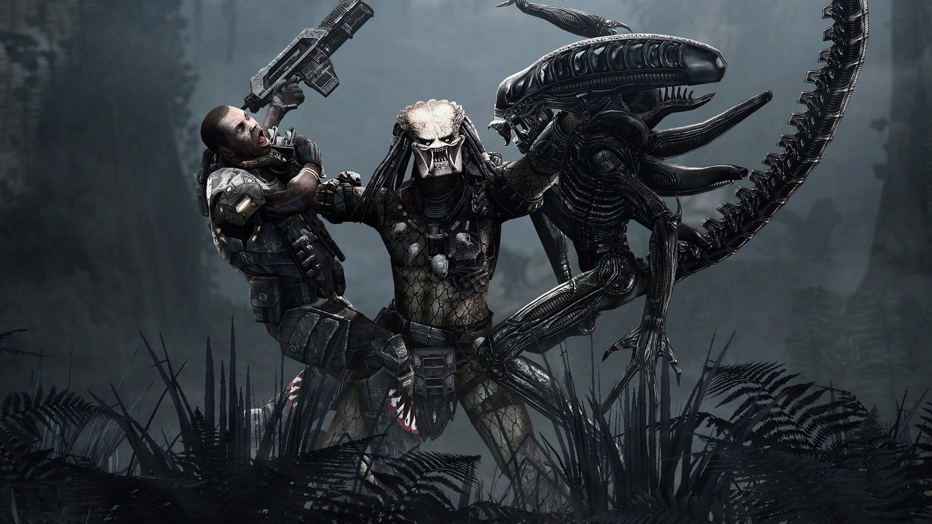 aliens vs predator game wallpaper background