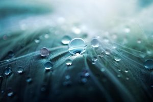 amazing water drops wallpaper
