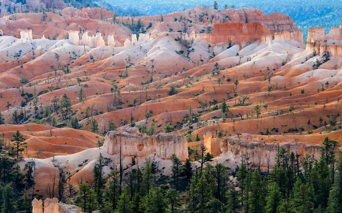 bryce canyon wallpaper background