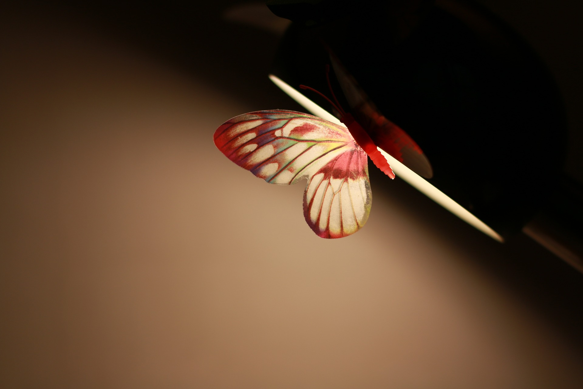 butterfly lamp wallpaper background
