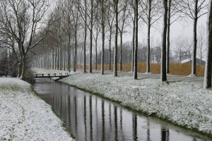 canal in winter wallpaper background