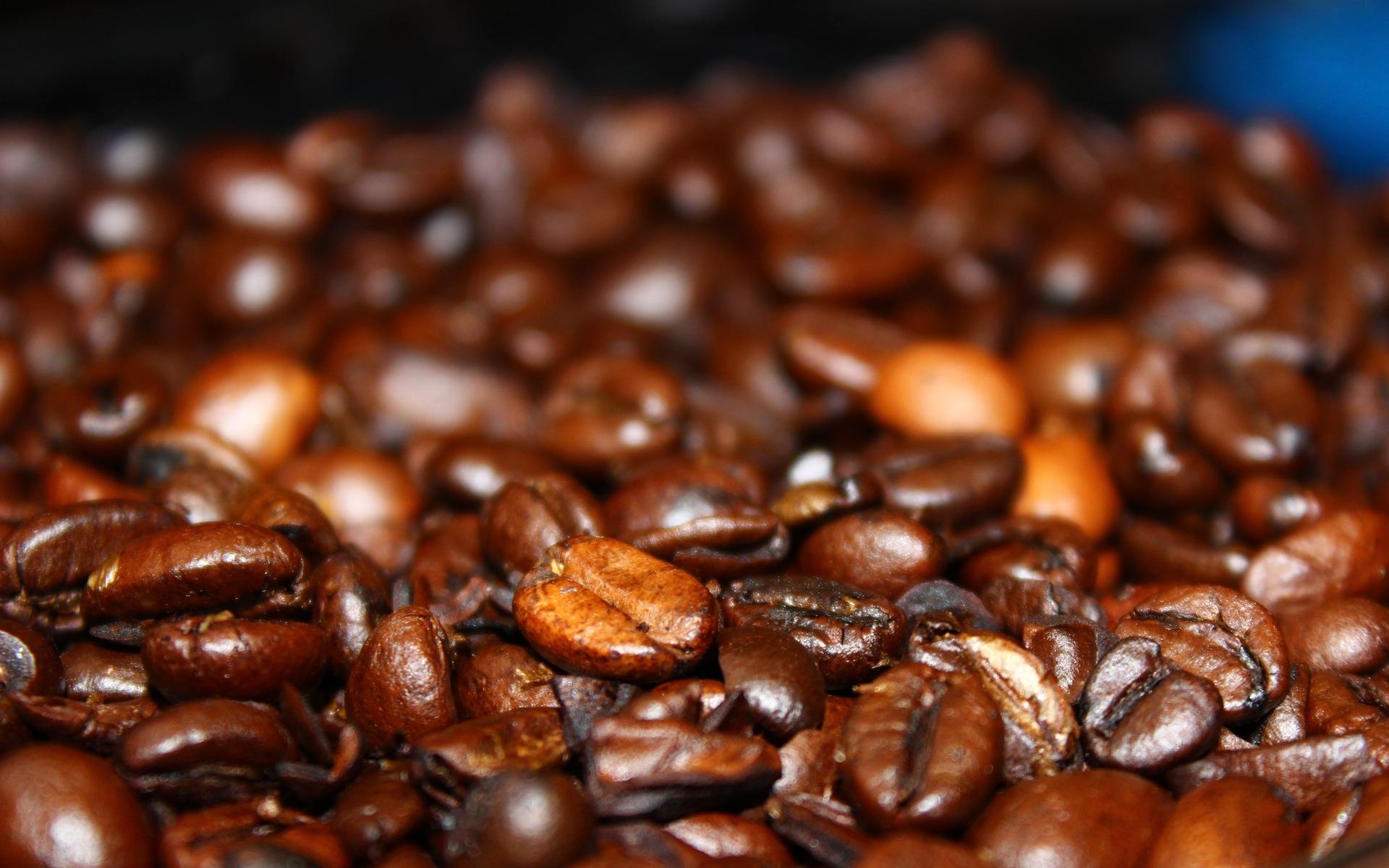 coffee beans macro wallpaper background