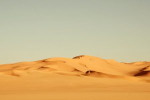 desert sand wallpaper background