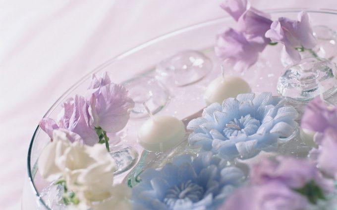 flowers in water wallpaper background
