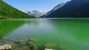 Green Water Lake Wallpaper Background