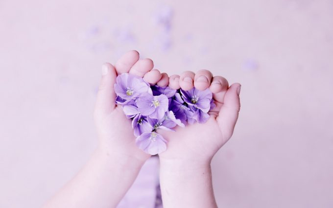 hands flowers heart wallpaper background