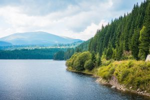 lake background wallpaper background
