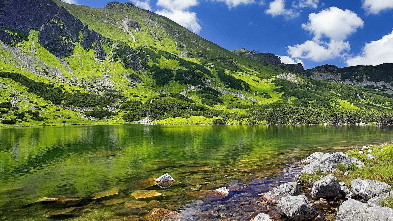 lake under green mountain wallpaper background