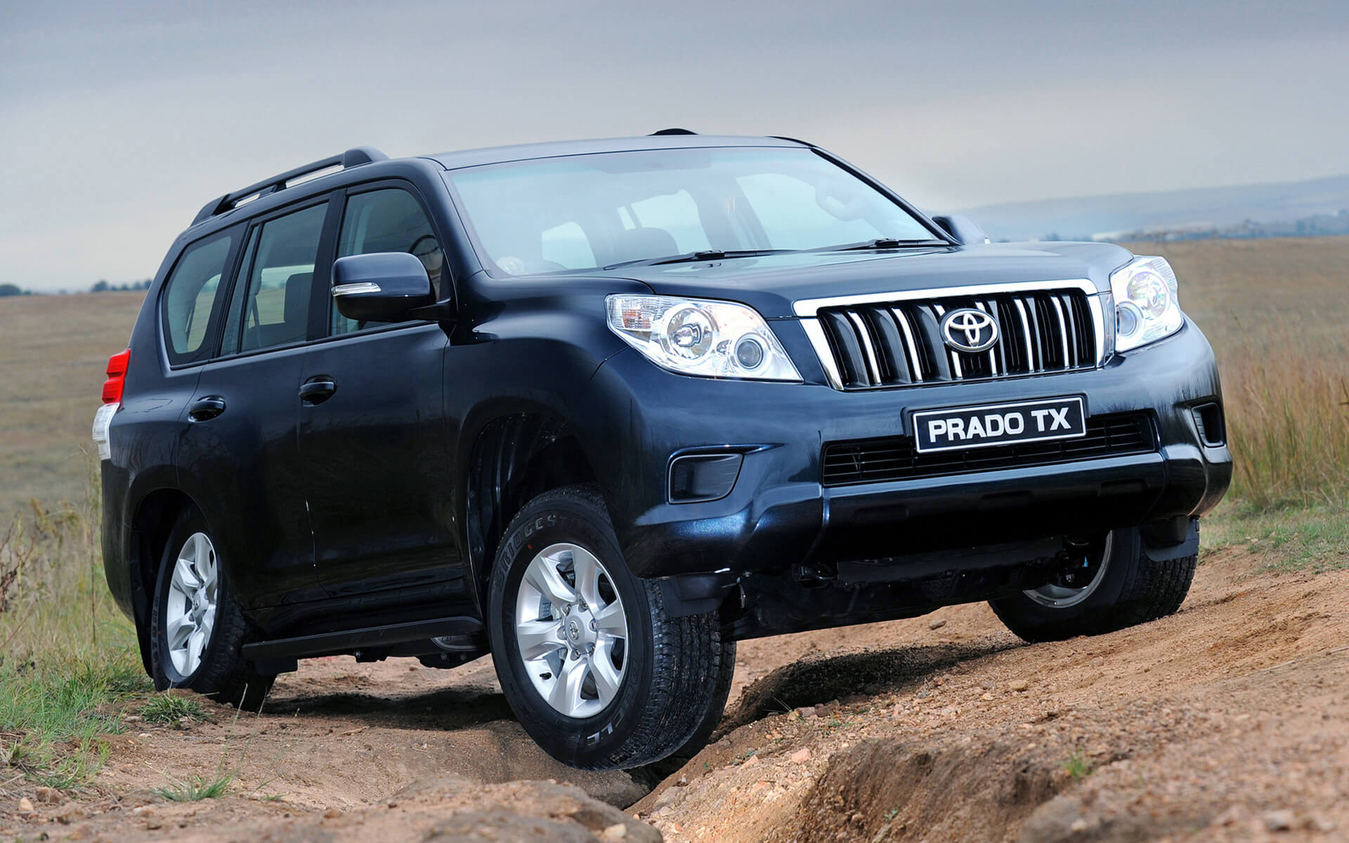 land cruiser prado tx wallpaper background