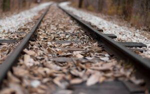 Leaves on Railroad Wallpaper Background