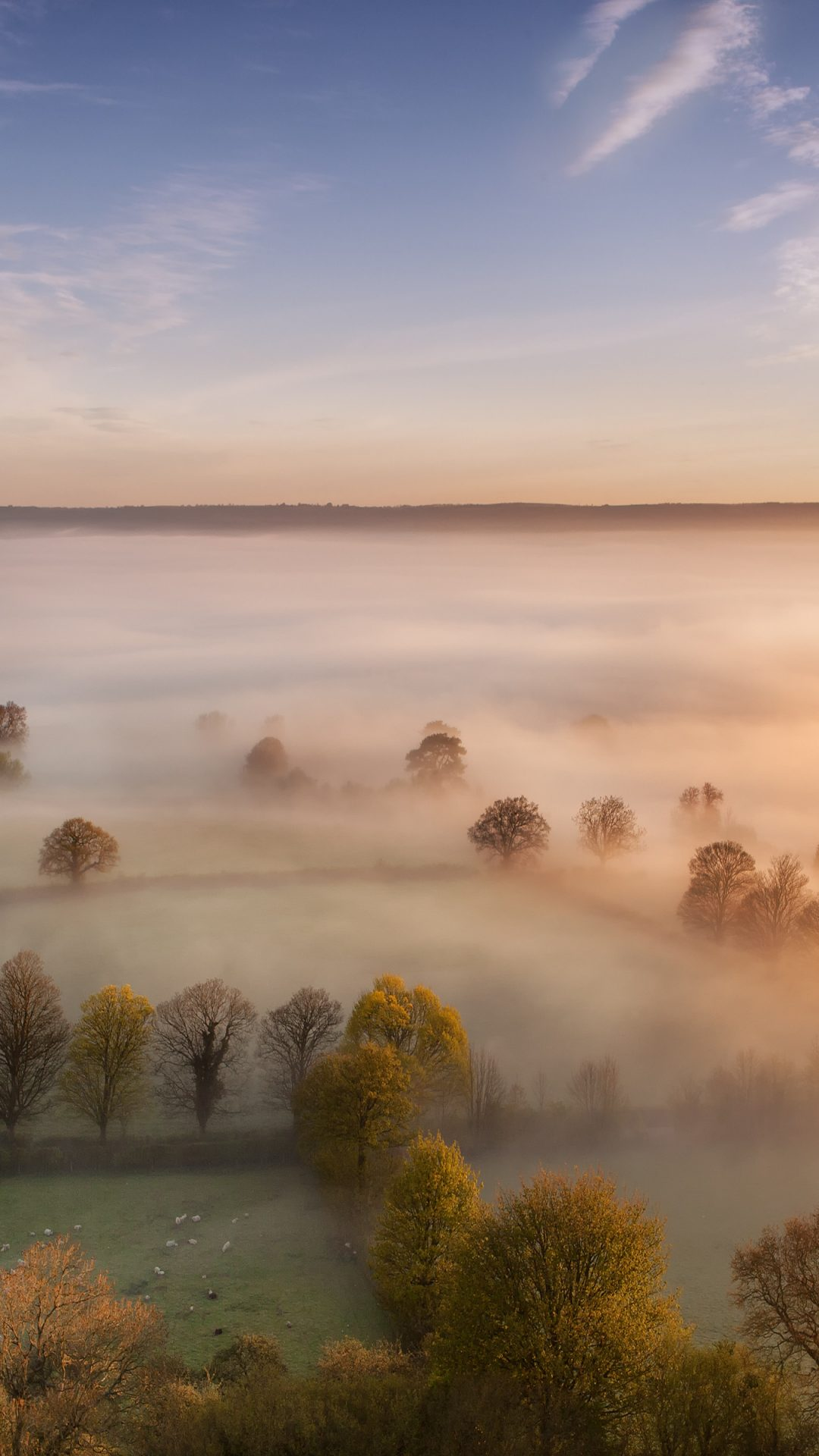 Morning Fog 4K Wallpaper | HD Wallpaper Background
