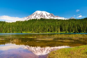 Mount Rainier 4K Wallpaper