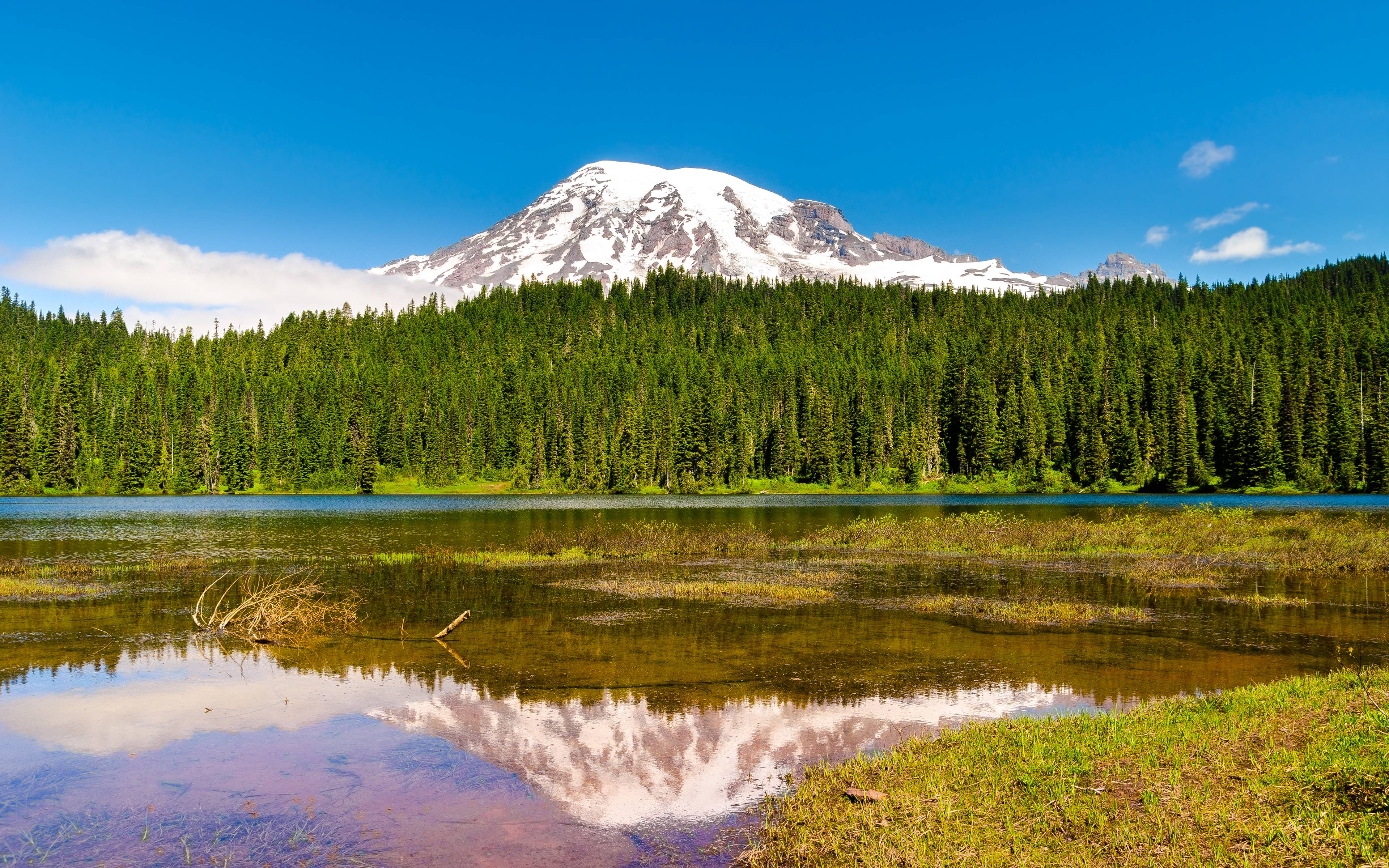 mount rainier 4k wallpaper background