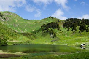 Mountain Lake Wallpaper 4K Background