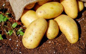 Potatoes Wallpaper
