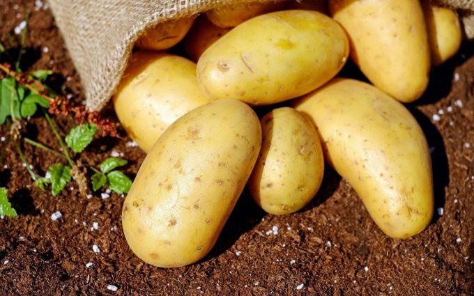 potatoes wallpaper background, wallpapers