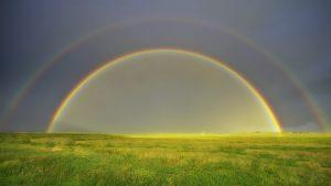 Rainbow Over the Grassland Wallpaper