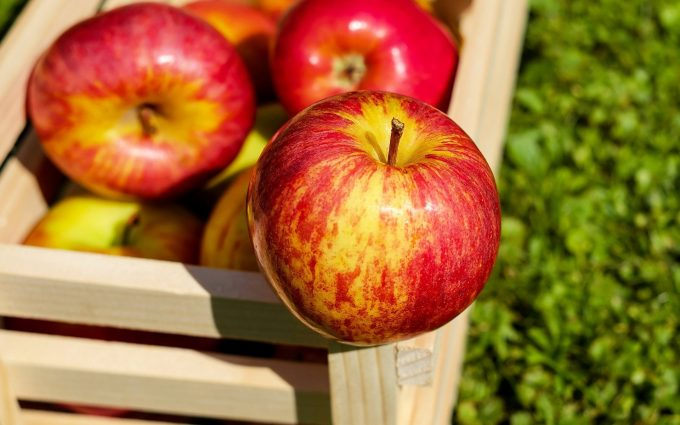 red apples wallpaper background wallpapers