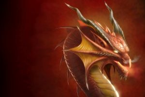 red dragon wallpaper background