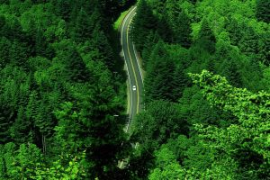 Road Aerial View Wallpaper