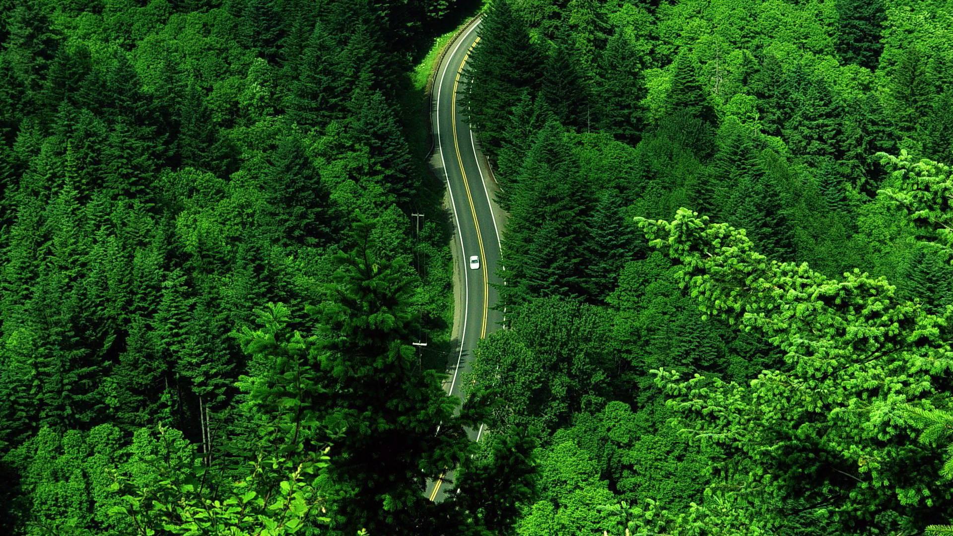 road aerial view wallpaper