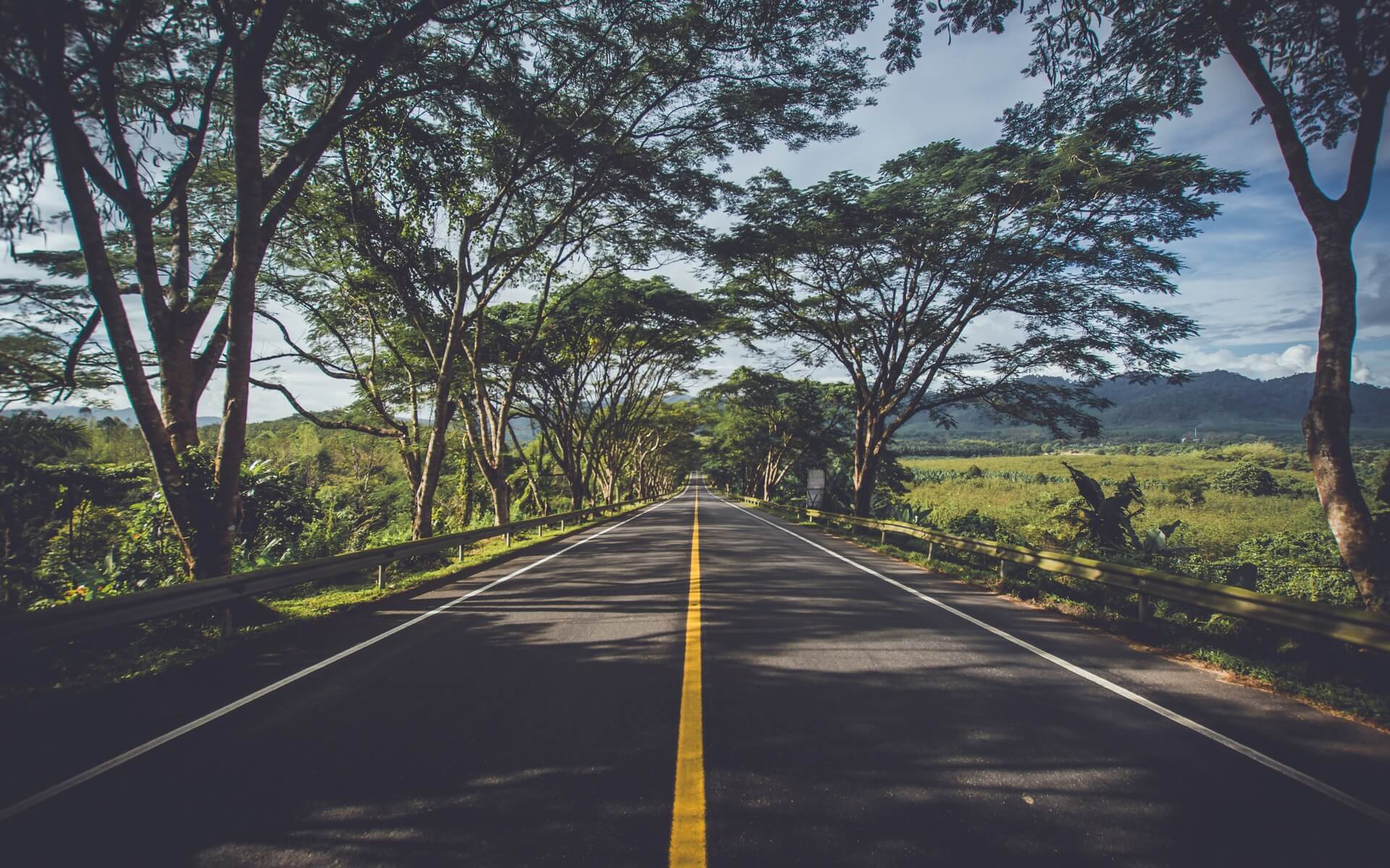 road in summer wallpaper background