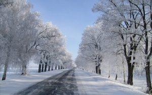 Road In Winter Wallpaper