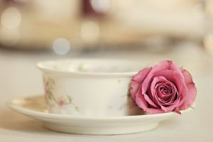 rose with tea cup wallpaper background