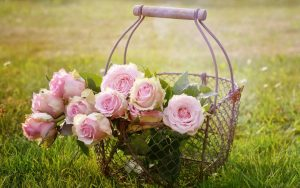 Roses in Basket Wallpaper