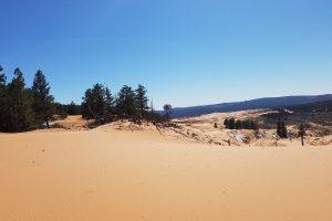 Sand Dunes Utah 4K Wallpaper