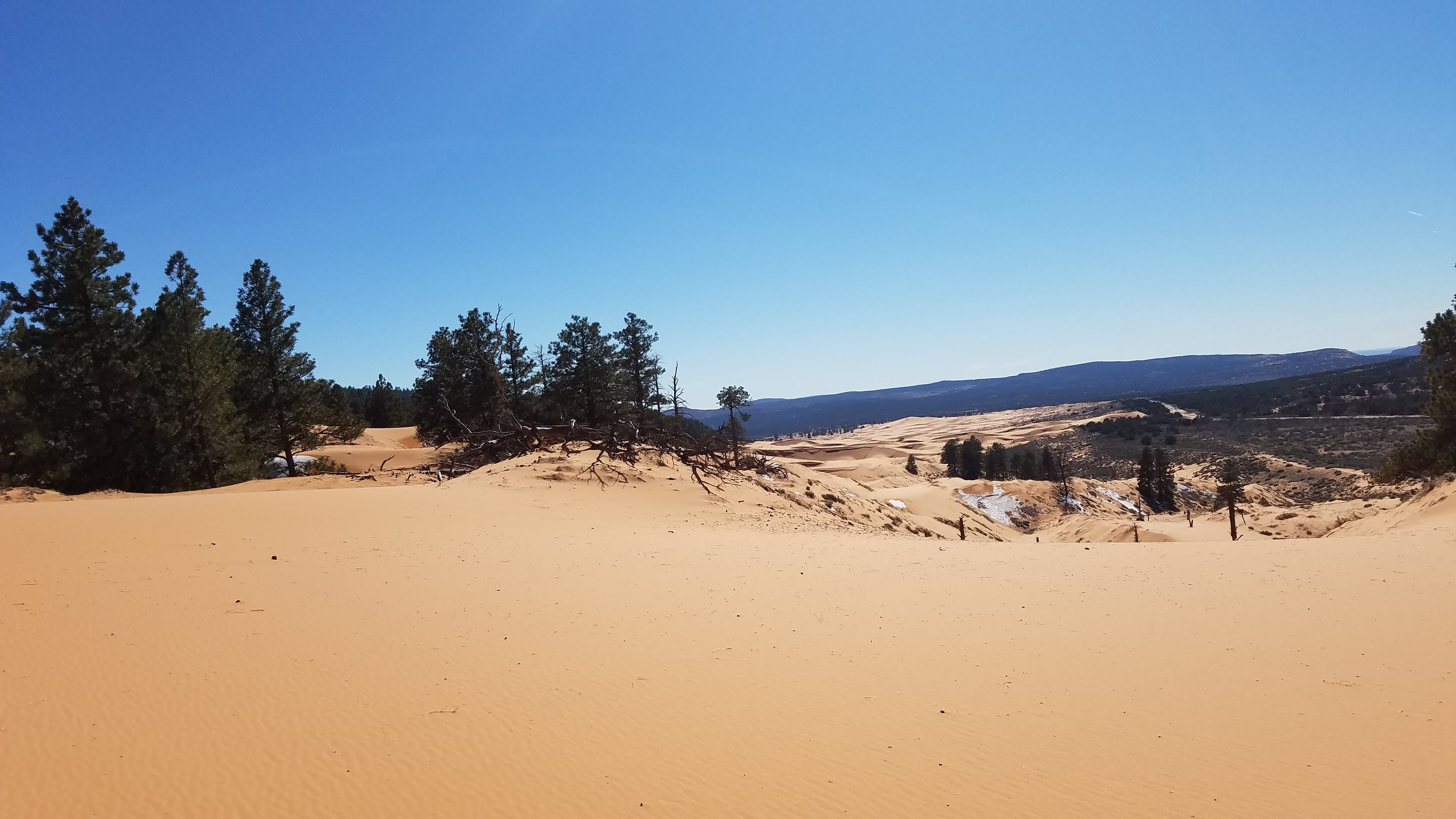 sand dunes utah 4k wallpaper background