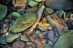 stones in water widescreen wallpaper background