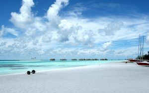 White Sand Beach Wallpaper Background