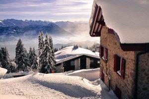 Winter Sunlight Wallpaper