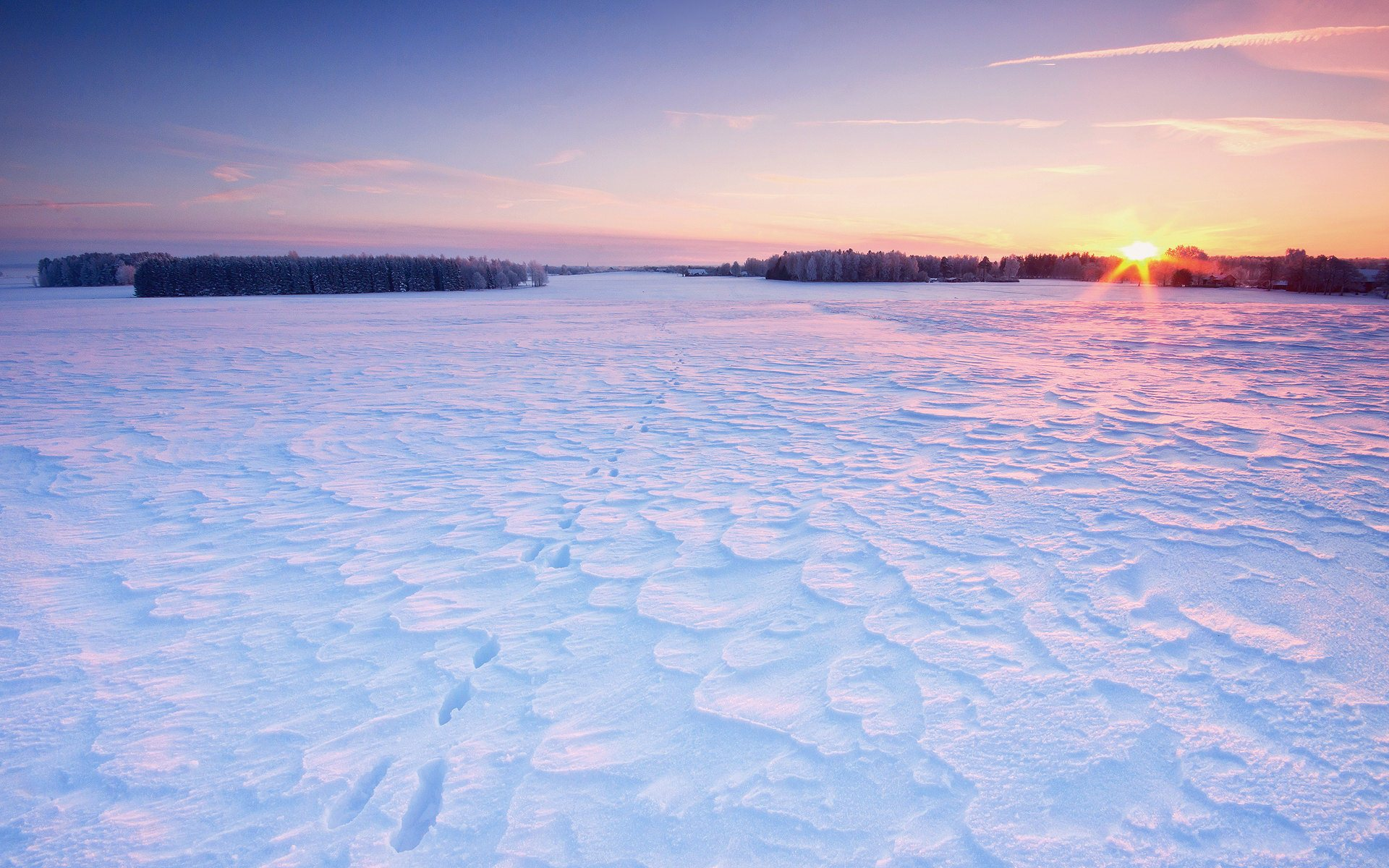 winter sunrise wallpaper background