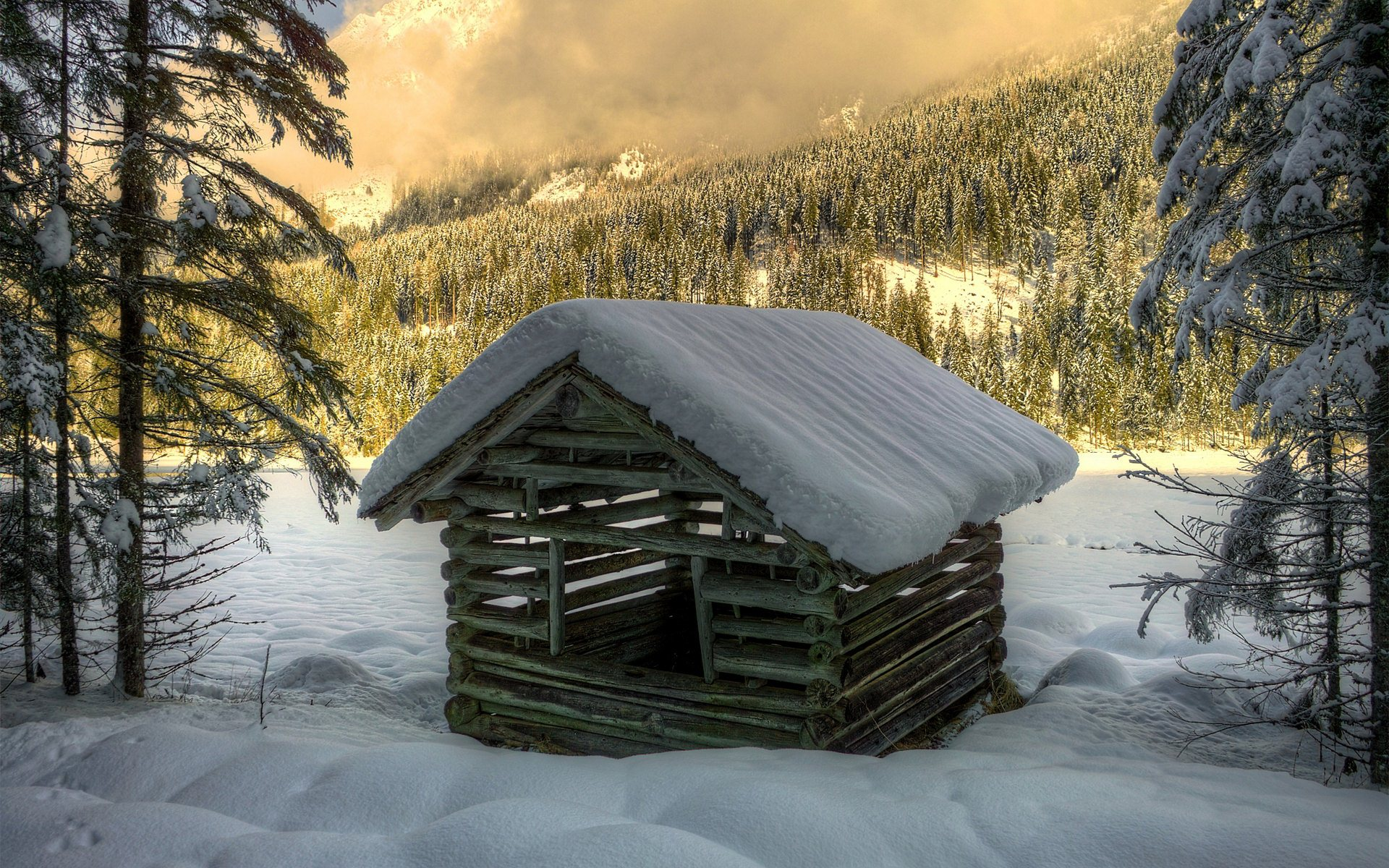 wood house wallpaper widescreen background images wallpapers
