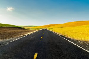 yellow field road 4k wallpaper
