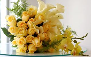 Yellow Roses Flower Wallpaper Background