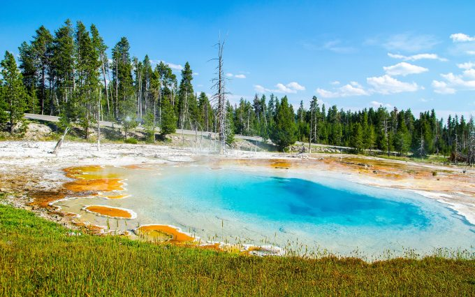 yellowstone national park 4k wallpaper background
